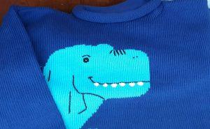Boys Dino Sweater